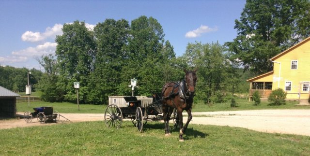 girod-buggy-cropped-1024x517